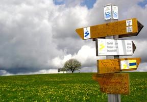 Markierung Goldsteig Zuweg Weiden Süd
